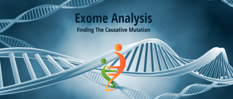 Exome Analysis